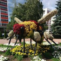 """Цветочная скульптура """"Бурзянская пчела"""""""